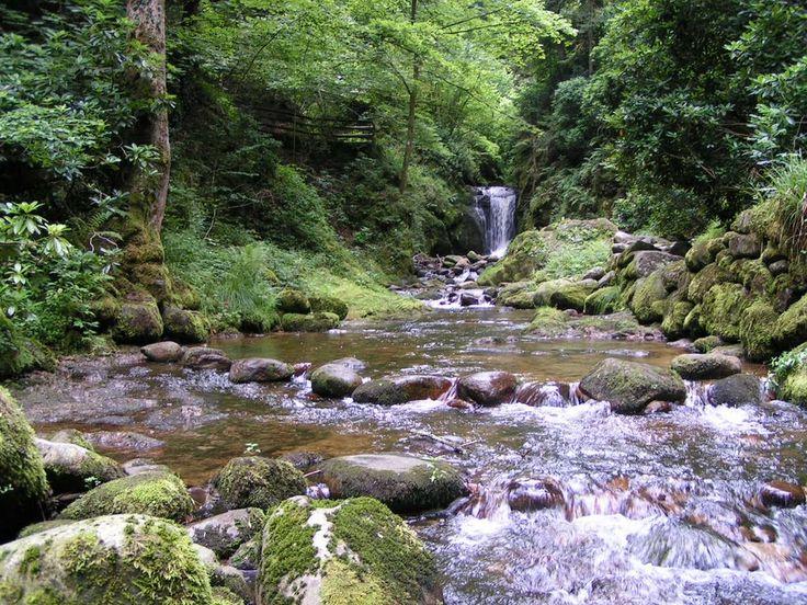Schwarzwald: Geroldsauer Wasserfall... https://www.pinterest.com/lucympaterson/