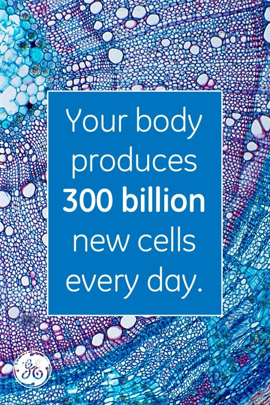 From skin cells to brain cells. #mindblown No wonder you're tired at the end of the day!