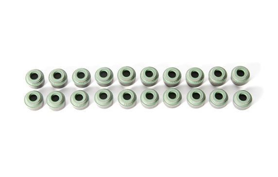 Valve Stem Seal- Priced Each  #Volkswagen #Audi #apr #exhaustmanifold #snowperformance #turbochargers #newsouthperformance #forge #ledlights #rosstech #intercooler #gofastbits #mishimoto #turbocharger #hidlights  New Arrivals!   Make sure to use your valued customer discount code ----> SPPMYDISCOUNT  Worldwide shipping available.