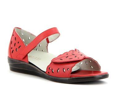 Shoes Sierra dazz
