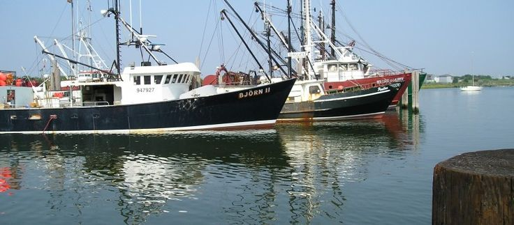NJ Fisheries: Harvesting Jersey Fresh Seafood Daily   Jersey Bites