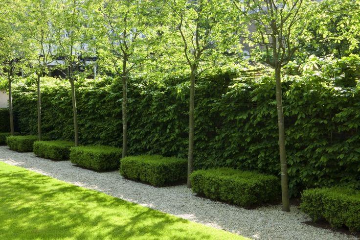 del buono gazerwitz landscape architecture / st. john's wood residence