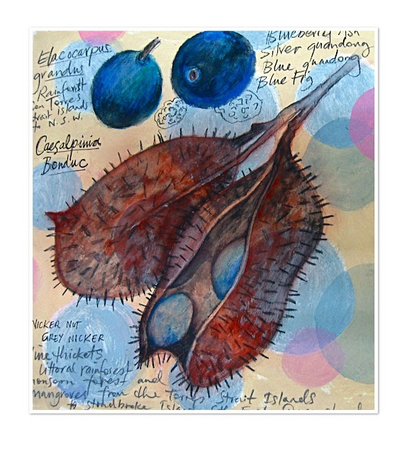 from the 'homage to the seed' residency journal 2010
