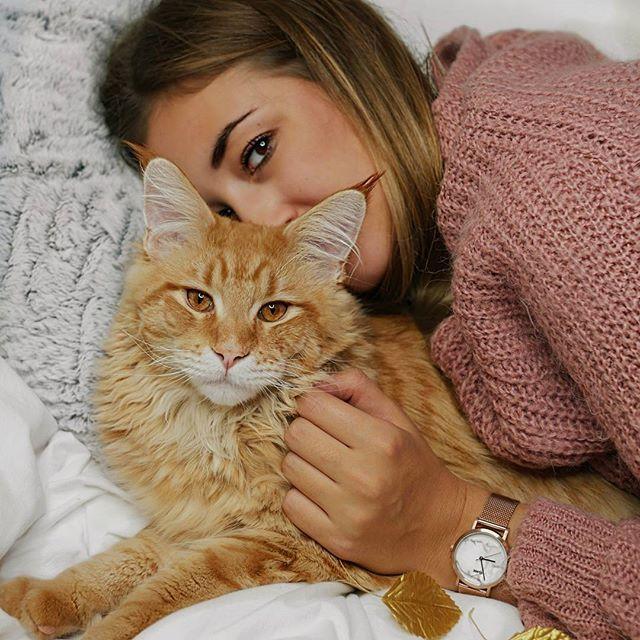 WERBUNG/AD*  Time spent with cats is never wasted @cluse ⌚ Wer will sich zu uns dazu kuscheln?  Auf meinem Blog ist gerade mein Cut and Talk Beitrag online gegangen. Also schaut gerne rein.  Ich wünsche euch noch einen schönen Sonntagabend.  #CLUSEwatches #CLUSE #FallForCLUSE ________________________________________________  #mainecoon #inspo #inspohood #mainecooncat #fashionblogger_de #munich #munichblogger #fauxfur #ootdgoals #ootdstyle #fakefur #knitwear  #velvet #catsofinstagram #...