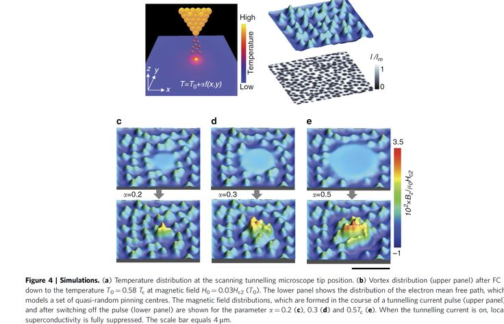Nanoscale assembly of superconducting vortices with scanning tunnelling microscope tip