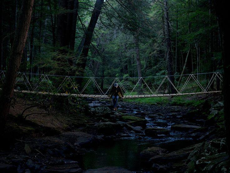 A dark, green wood with rocky stream and a bridge. Mmhmm....  Cooke's Bridge.