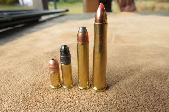From left to right: .22 Short, .22LR, .22 Magnum, .22 Hornet