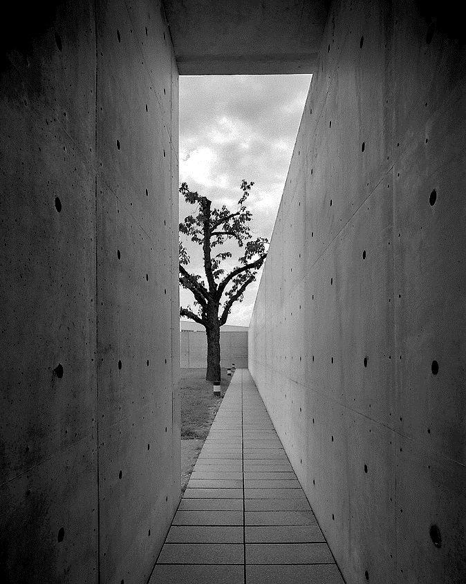 Conference Pavilion : Vitra Design Museum, Weil am Rhein | Tada Ando | Photo :  Rui Morais de Sousa
