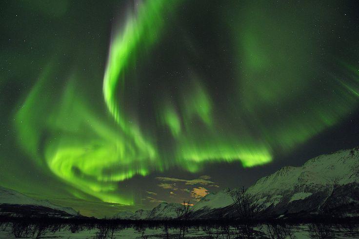 Grüne Landschaft  Grüne Landschaft  Dieser geomagnetische Sturm erhellte im Januar 2012 den Himmel über Trömso. Die Sonnenaktivität, deren Zyklus 11 Jahre umfasst, erreichte 2012 und 2013 ihren Höhepunkt.