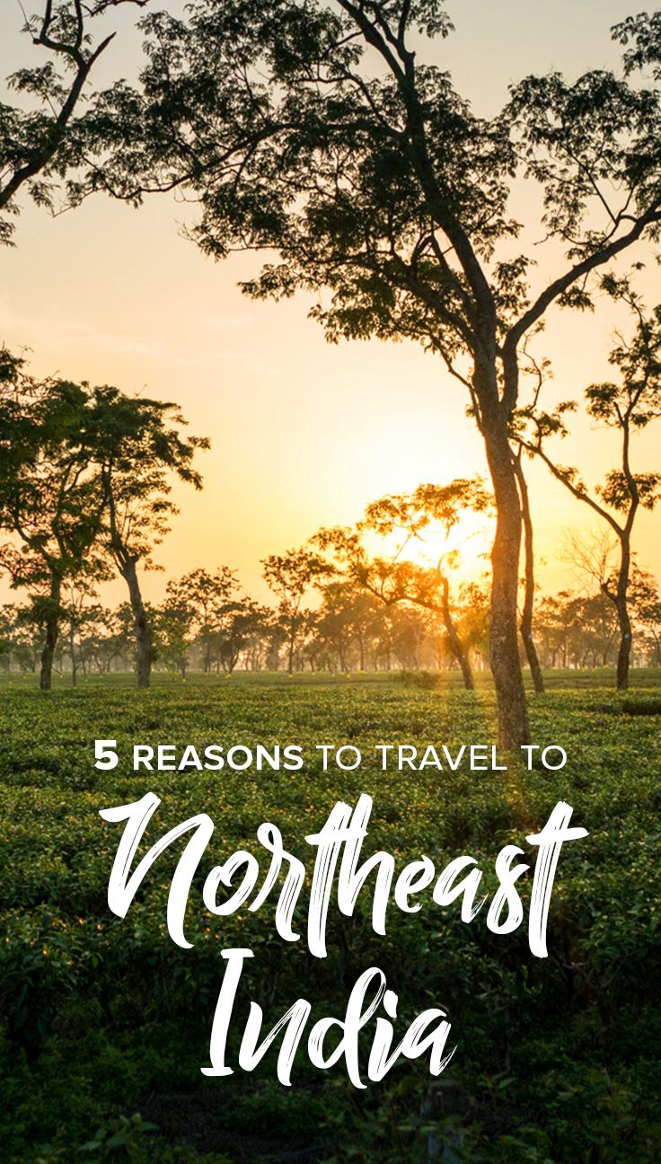 Love off the beaten track travel, outdoor adventures, and friendly local people? Maybe it's time to consider traveling to Northeast India! Read on for 5 reasons why you should travel to Northeast India, plus more inspiration, advice, and travel blog posts on the region.