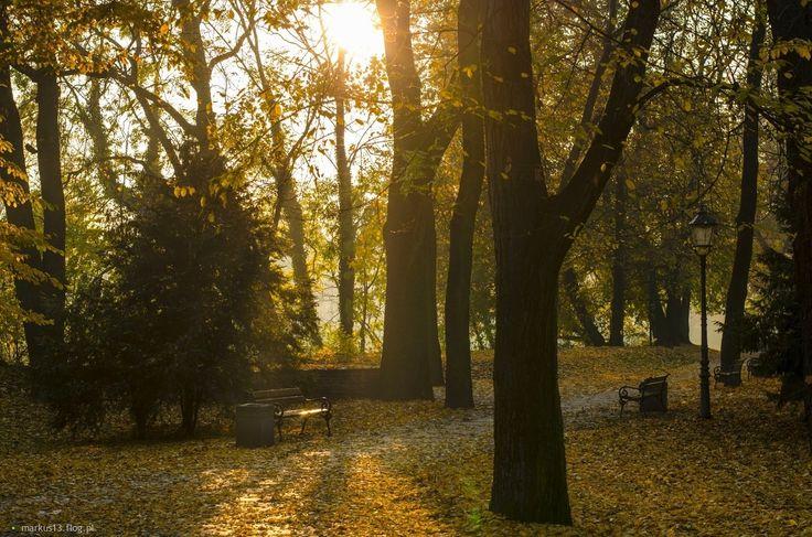 Racibórz.Jesień w parku zamkowym.
