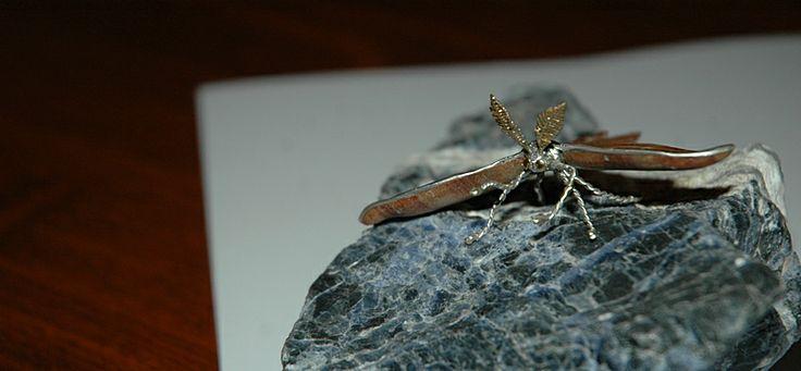 """Papillon """"Luna Moth """" : bois de rose du Brésil , argent et or jaune"""