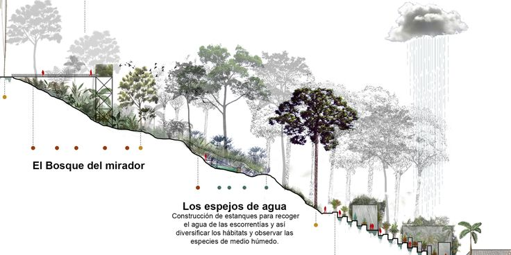 Galería de L-A-P, primer lugar por plan maestro del cerro La Asomadera en proyecto que transformará Medellín - 24