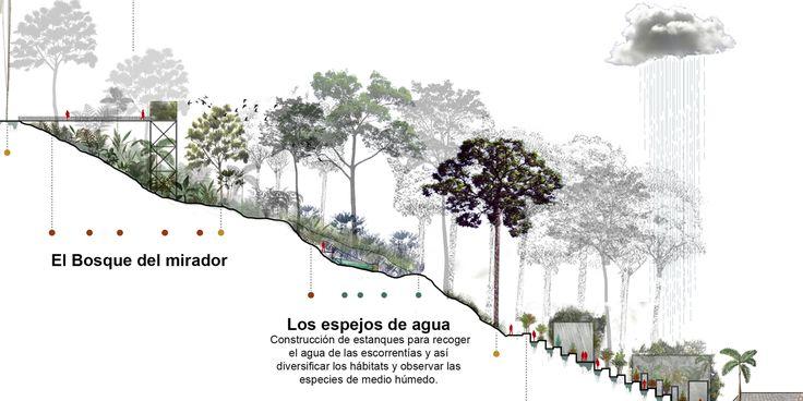 Galería de L-A-P, primer lugar por plan maestro del cerro La Asomadera en…