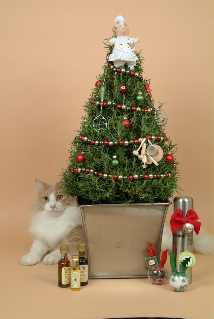 Will love it christmas pinterest smell good trees and rabbit