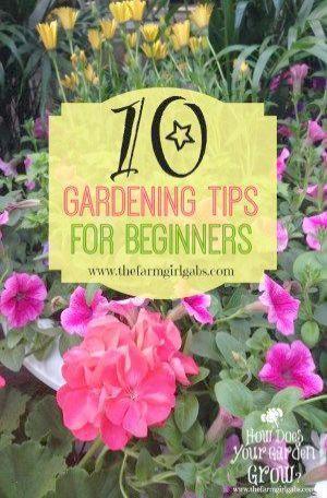 Gardening Tips For Beginners Australia one Gardening Tips For Beginners Vegetabl…,  #Austra…