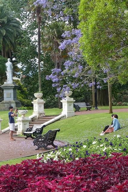 albert park in Australia