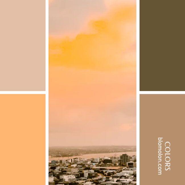24+ Paletas de colores vintage trends