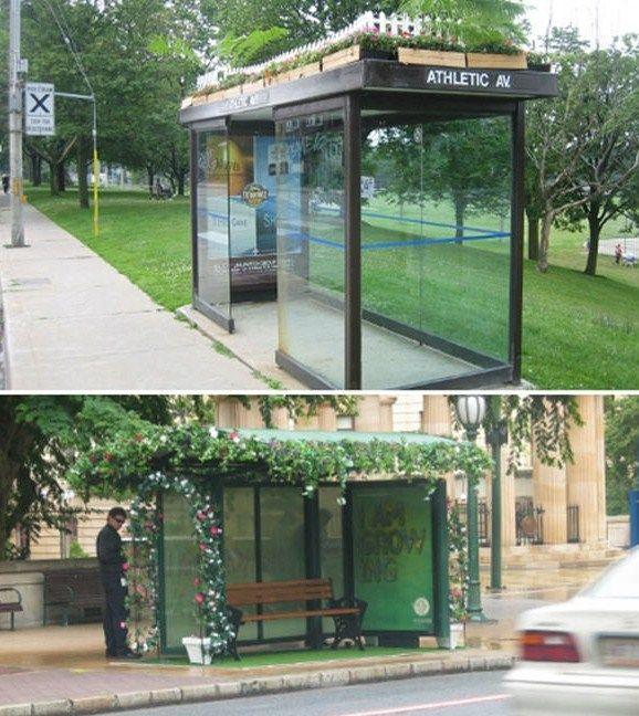The Bus Shelter Garden