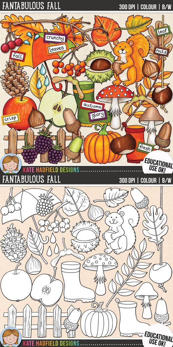 Autumn / Fall Clip Art for teachers by Kate Hadfield Designs | Teachers Pay Teachers. Supplied in both hand-painted coloured versions and black and white outlines! #katehadfielddesigns