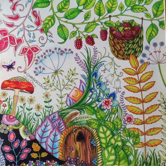 336 Best Enchanted Forest Coloring Book Images On