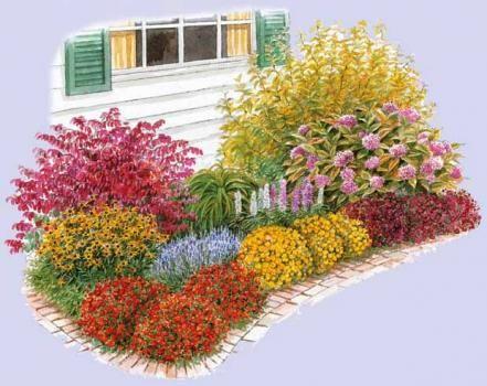 Plate bande vivaces mi ombre recherche google - Fleurs qui poussent a l ombre ...