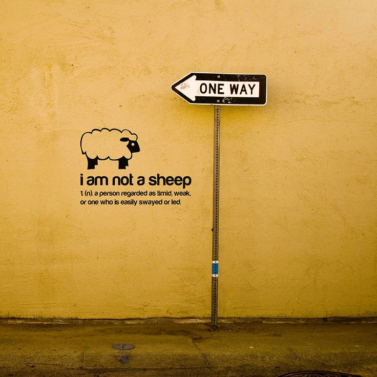 I am not a sheep!