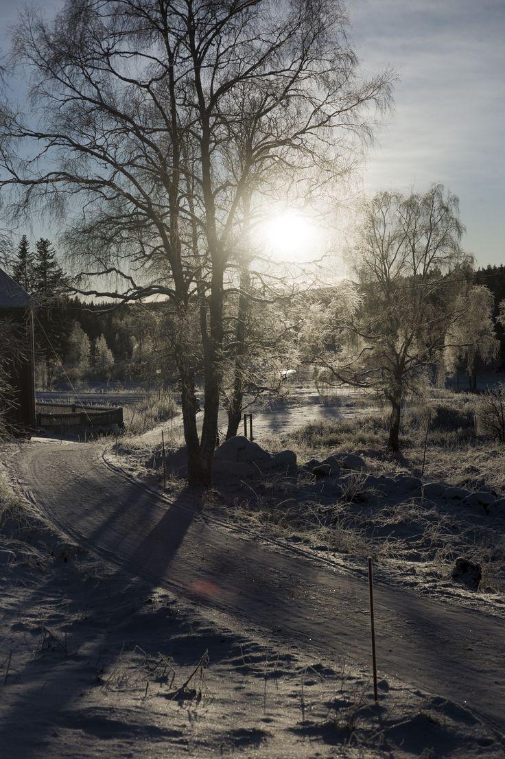 Norrlandsvinter från sovrumsfönstret i Katrineberg