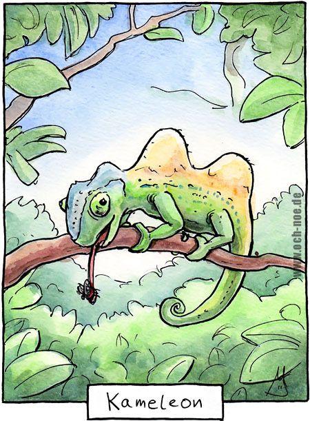Achtung Rechtschreibung... sonst wird es ein Kameleon :D www.och-noe.de - Cartoons