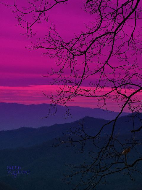 purple MOUNTAIN sunset