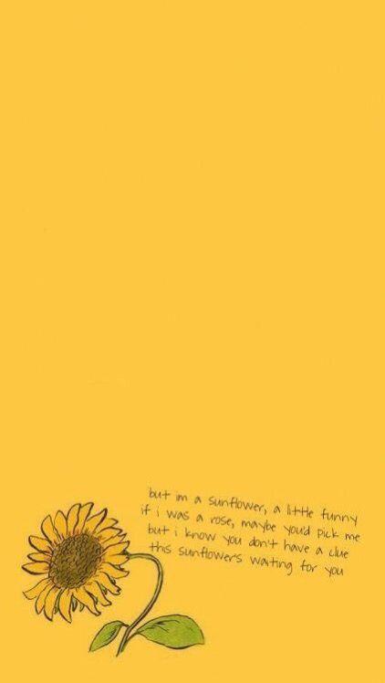 Vsco Relatable Vsco Iphone Wallpaper Yellow Tumblr Yellow Sunflower Wallpaper