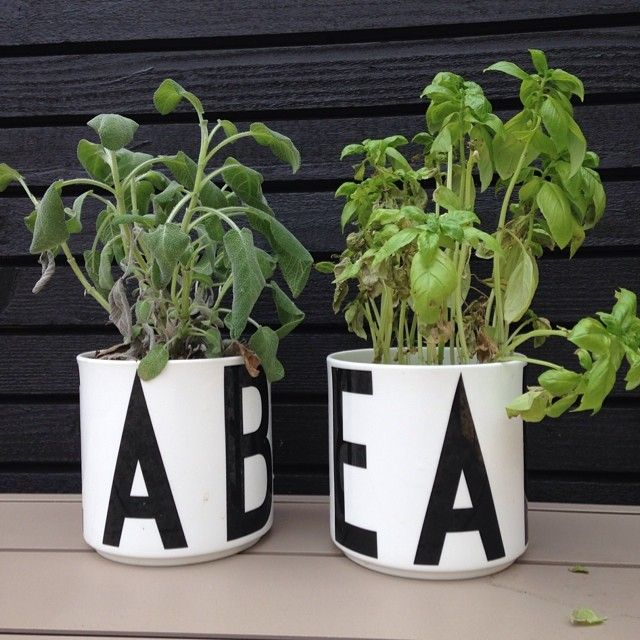 Use our jars for storage or plants! Typography by Arne Jacobsen.