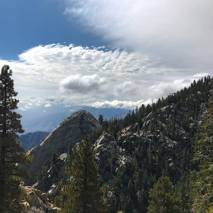 Gorgeous views while hiking in San Jacinto State Park Riverside County CA http://ift.tt/2hsnSeu