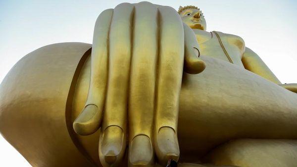 """Enseignée aux Etats Unis, mais pas encore en France, les """"Buddhist Economics"""" puisent dans les enseignements bouddhistes pour proposer une approche radicalement différente de l'économie. Economie de moyen, limitation des désirs, interconnexion avec les autres et la nature. Et si c'était la[...]"""