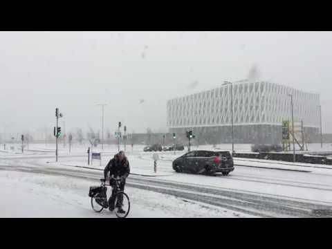 December in Viborg, Denmark | 2017