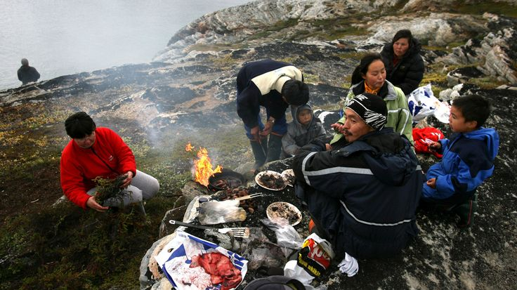 A new study on Inuit in Greenland suggests that Arctic peoples evolved genetic adaptations that allow them to get by mostly on seal blubber and meat without developing health problems.