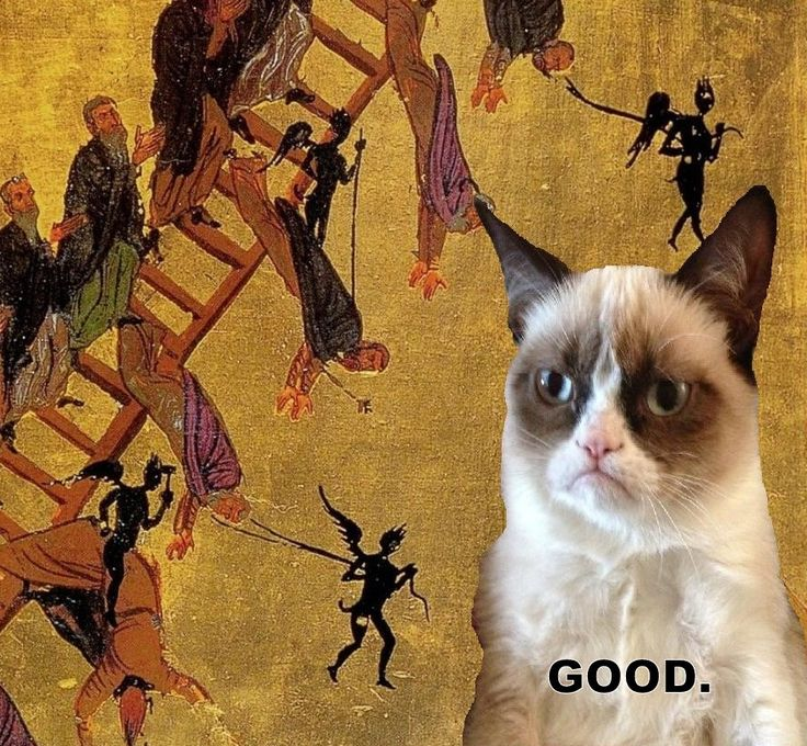 Image result for grumpy cat orthodox