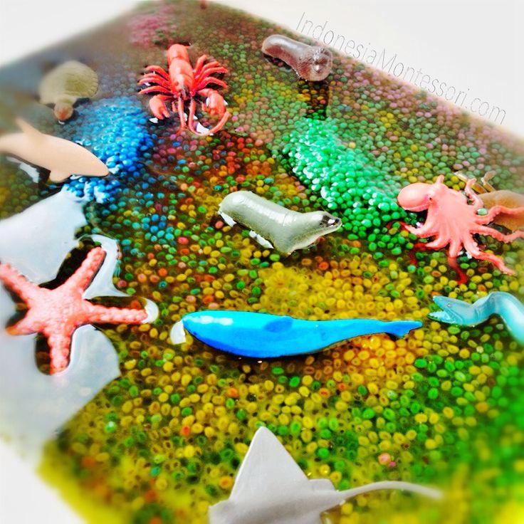 Ide Permainan Sensori : Under The Sea