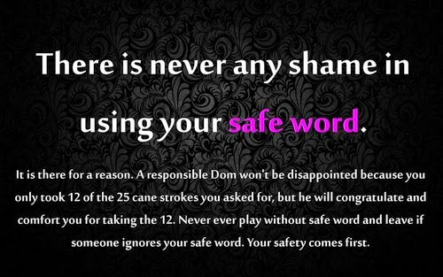 Safe Word ~ I cannot overemphasize the importance of always having a safe word system in effect .. safe, sane and consensual