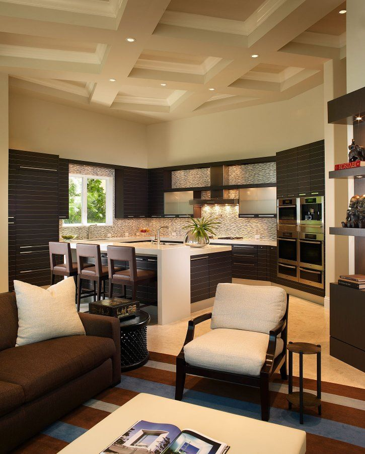 living room showcase designs%0A change the cabinets  interesting design Modern Kitchen  u     living room   open floor plan by b g design  The coolest I u    ve seen  Back to the drawing  board  ahh