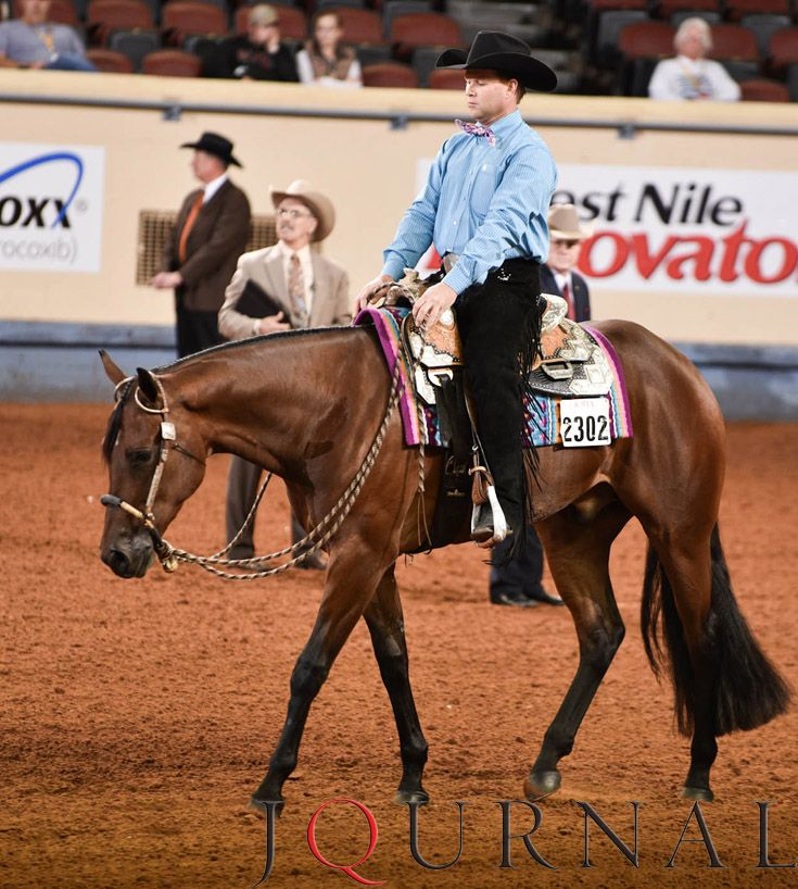 2-Year-Old Western Pleasure I Made N The Shade and Andy Cochran, 2016 AQHA world champion