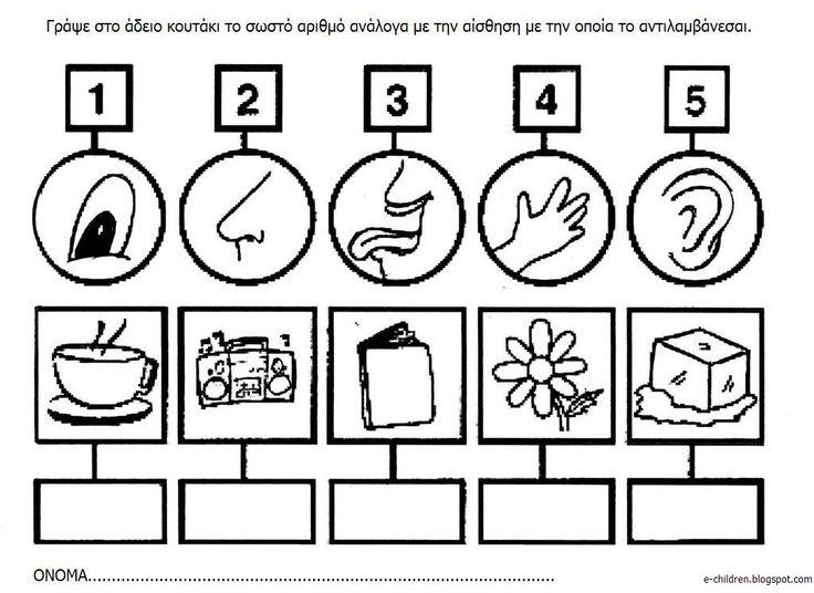 Πίνακες αναφοράς , τόμπολα ταύτισης και φύλλα εργασίας για γραφή και μαθηματικά για τις 5 αισθήσεις.                                      ...