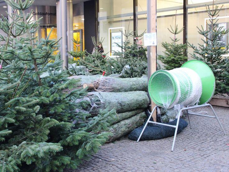 Christmas trees for sale, Nuremberg