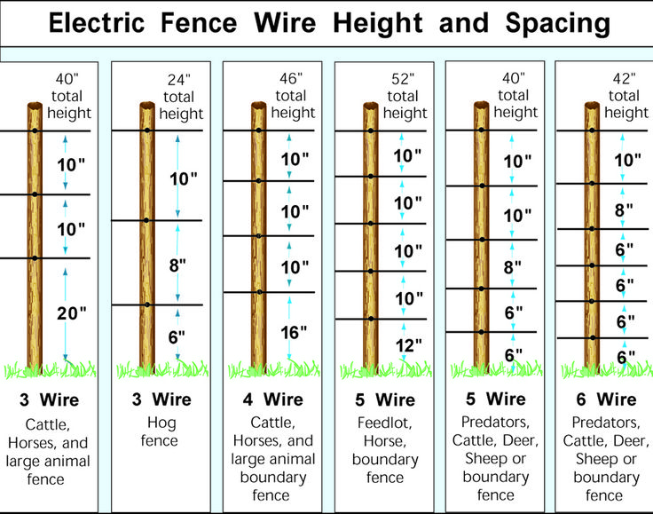 Electric Fence Wire Heights                                                                                                                                                      More