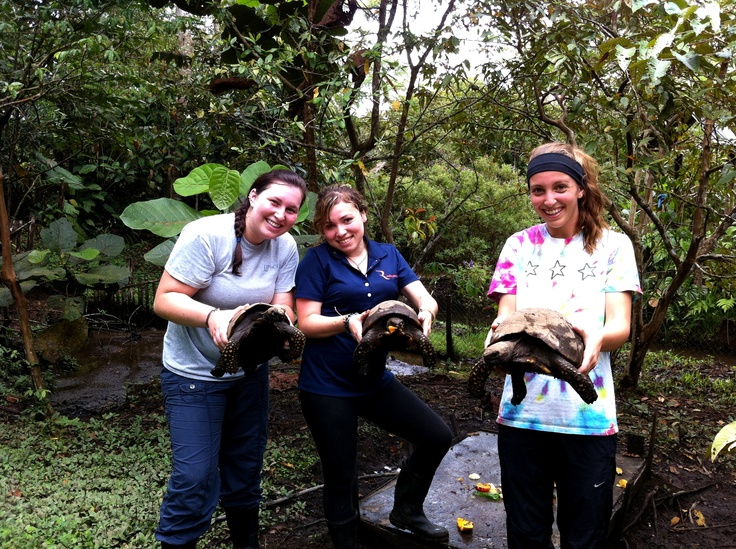 Volunteers at the Animal Rescue Center in the Amazon!