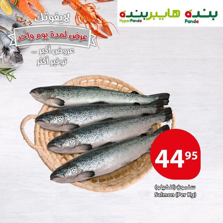 عروض بنده One Day Only Salmon Fish