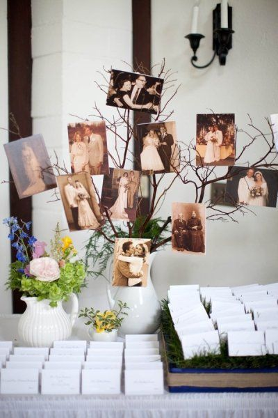 Family Tree of wedding pictures at the reception.  Great idea, especially in my family w/ Mom's love of genealogy!