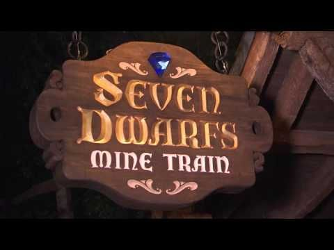 Disney After Hours at Magic Kingdom   Walt Disney World Resort