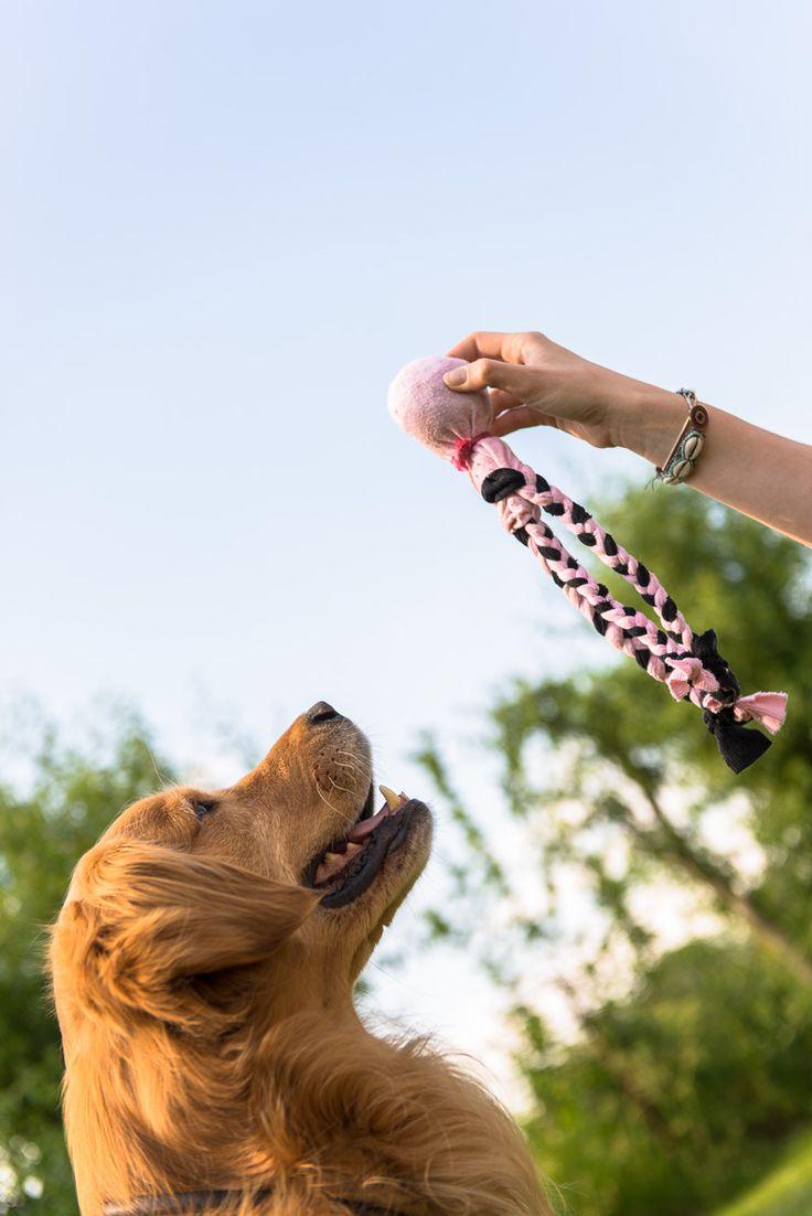 // // Heute geht es um selbst gebasteltes Hundespielzeug und, ob dieses besser oder schlechter ist als gekauftes. Wie auch immer man es sehen möchte, dem Hund scheint es wohl egal zu sein, ob sein …