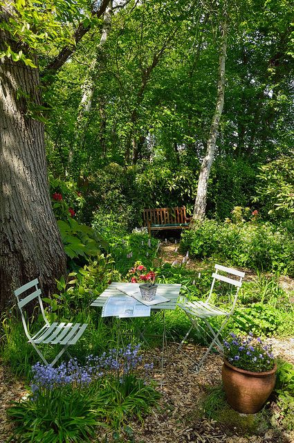 garden design / repinned on toby designs. Seating in a woodland garden.